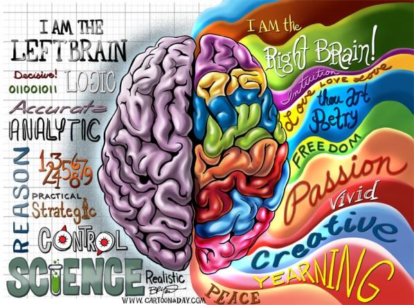 حقائق عجيبة وغريبة عن الدماغ الأيمن والأيسر 1